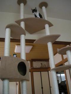 タワーと睦.JPG