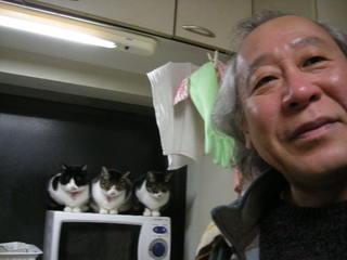 三猫るるる.JPG